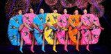 Cabaret Paris - Paradis Latin