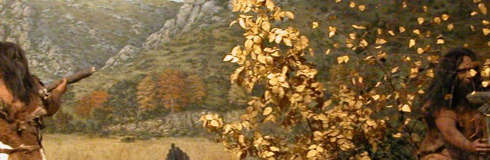 Fotos Museo de Tautavel