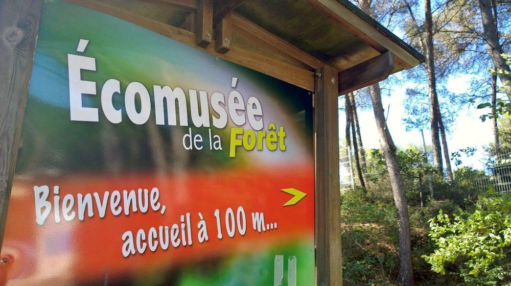 Ecomusée de la Forêt à Gardanne