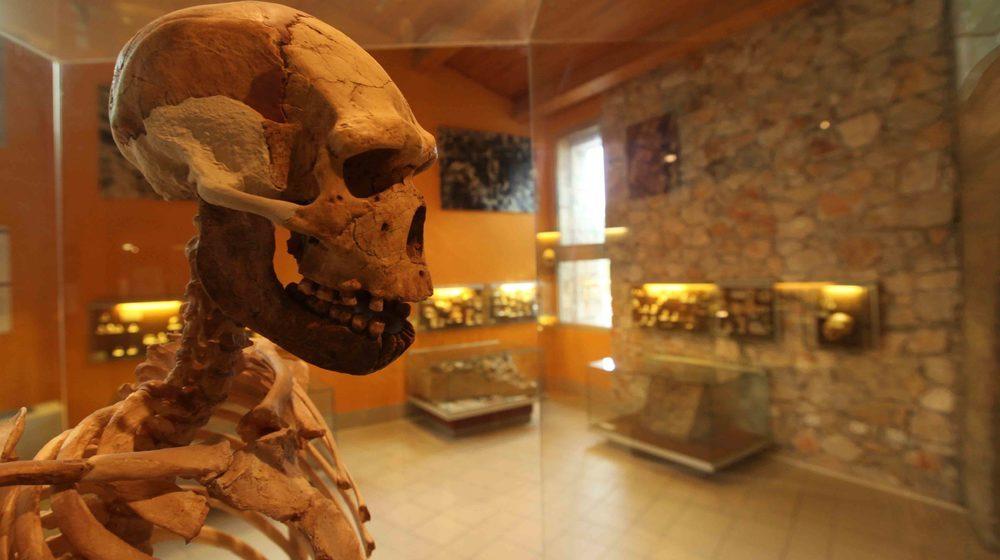 Musée de Préhistoire de Tautavel