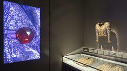 Musée Yves Saint Laurent Paris : Veste du soir dite ''Hommage à ma maison'' © Musée Yves Saint Laurent Paris / Luc Castel