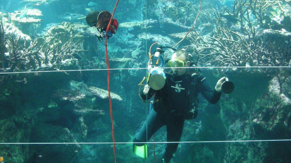 Un plongeur à la Cité de la Mer Cherbourg