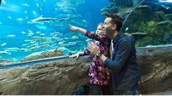 Aquarium Sea Life à Londres - un superbe moment en famille